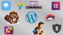 The Complete Guide to the Best 200 WordPress Plugins