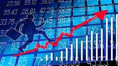 Netcurso-apprendre-a-trader-sur-le-marche-du-forex-guide-complet
