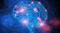 Professional Cognitive Behavioural Therapy (CBT) Diploma   Udemy