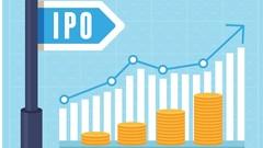 IPO Fundamentals