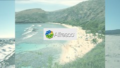 Alfresco - Introduction to the Company and its Products
