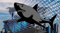 Hacking und Netzwerkanalyse mit Wireshark - Der Komplettkurs