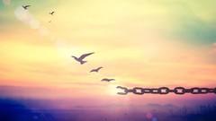 Como Conquistar a sua Liberdade Emocional através da EFT