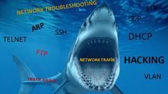 Netcurso-wireshark-egitimi