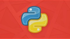 Python Programming : Learn Python with 100+ Practicals
