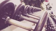 Weight Lifting Essentials