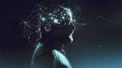 Mindset Campeão: A Psicologia da Prosperidade Revelada