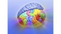 TRIZ - Teoria da Resolução de Problemas Inventivos