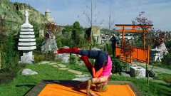 FitYoga: Healing Yoga to get in shape and transform yourself
