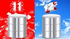 Oracle: The Complete SQL Guide + Cert. (Dumps: 1Z0-061/ 071)
