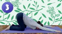 Tudo sobre Yoga (Parte 3 de 12)