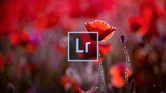 Adobe Lightroom for Beginners