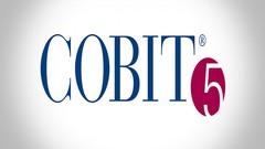 COBIT Practice Exam|Get Certified Easily For 2019