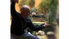 Alinhamento postural para a prática de Tai Chi Chuan
