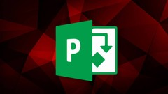 Microsoft Project Pro