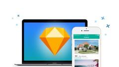 Netcurso - sketch-apprenez-a-designer-des-apps-mobiles-de-a-a-z