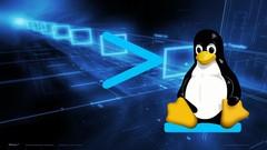 Netcurso-terminal-linux-do-zero-ao-gerenciamento-de-redes