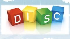 Understanding DISC Profiling
