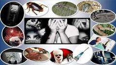 Imágen de Supera  Fobias con PNL