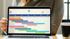 Powerful Excel Gantt charts -Effortless Project Management !