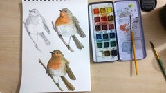 Sketchbook Everyday: Painting Birds in Watercolor