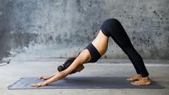 Fully Accredited Yoga Foundation Course - Learn & Love Yoga!