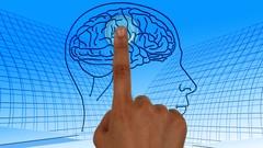 Brain Training: Rewiring Your Mind