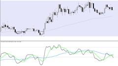 Pro Trader Network Traders Workshop