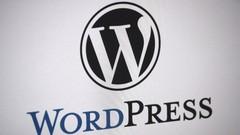 Wordpress seo - Automatic Subdomains script