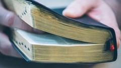 Study the Bible (3); Torah Purpose in the 'Beginning.'
