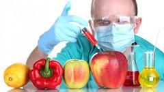 Tudo Sobre Alimentos Transgênicos + Cartilha Grátis