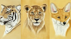 Draw Wild Animals using Pastel Pencils Volume 2
