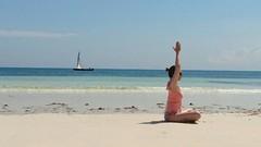 4 Week Pure Beginners Yoga Course
