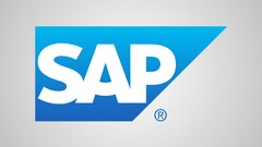 SAP ERP Made Simple: Online Beginner Training