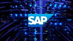 Administrador SAP NetWeaver. [SAP BASIS].