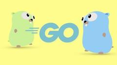 Go (Golang): The Complete Bootcamp (Updated: August 2019