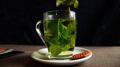 Netcurso-troubles-digestifs-plantes-medicinales-huiles-essentielle
