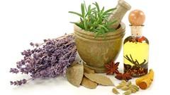 Rimedi Naturali - I preparati casalinghi con le piante