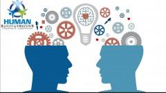 Inteligencia Emocional en el Trabajo desde cero