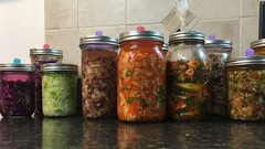Sauerkraut and Kimchi Basics