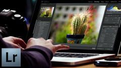 Introducción a Photoshop Lightroom