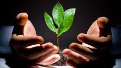 Capital Raising & Venture Capital Funding For Entrepreneurs