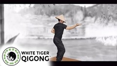 White Tiger Qigong Presents: Qigong to Conquer Fear