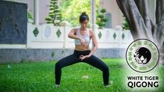 White Tiger Qigong for Pain-free Shoulders, Wrist, & Fingers