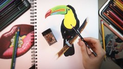 The Ultimate Photorealistic Drawing Course