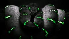 Fastest python 3 course for beginner