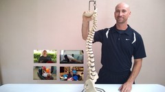 CORE EXERCISES Safe & complete workout for a healthier spine