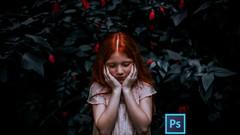 Netcurso - adobe-photoshop-esencial-colores-luces-sombras