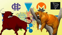 Altcoin Crypto ( Master Class ) Bull Run or Bear Market