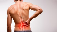 The Ultimate Guide for Low Back Pain: Mend your body support